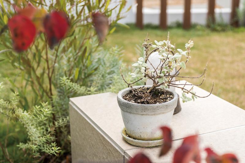 お庭のベンチとしても使える花台に、好みの鉢植えを。気分で楽しむ手軽さが人気。