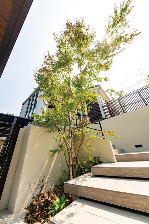 アプローチ階段の手すりと、お庭のフェンスに黒いアイアンを使用。モダンな雰囲気に。