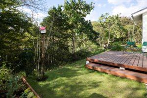 芝生と巣箱のあるお庭